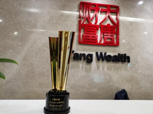 """大唐财富荣获中国公益节""""2019年度公益集体奖"""""""